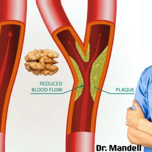 #1 Nut For Healthy Arteries & Heart | Dr Alan Mandell, DC