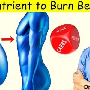 #1 Nutrient Your Body Wants to Lose Belly Fat - Dr Alan Mandell, DC