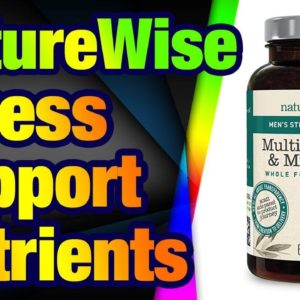NatureWise Men's Stress Support Whole Food Mult ivitamin and Mineral Complex for Men's Heal