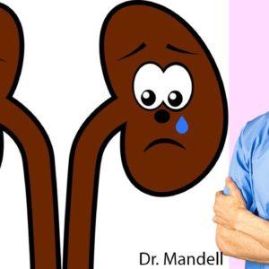 Most Important Herbs to Prevent Sad Kidneys - Dr Alan Mandell, DC