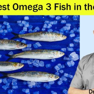 Heart Healthy/Prevent Clogged Arteries...BEST Omega 3 Fish in the Ocean - Dr Mandell