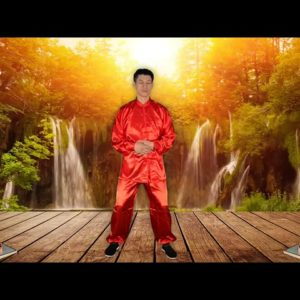 Tai Chi Chuan 4 minutes exercise