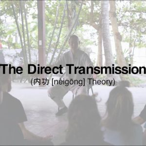 The Direct Transmission