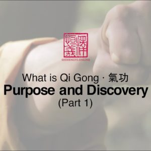 What is Qi Gong: Part 1 · Purpose and Discovery
