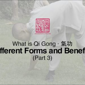 What is Qi Gong: Part 3 · Different Forms and Benefits