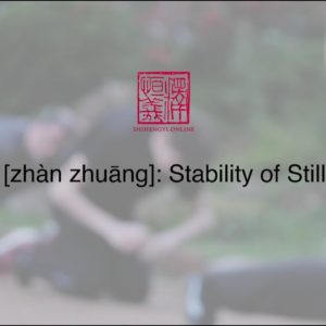 Zhàn zhuāng 桩功 - Stability of Stillness (w/ Subs)