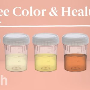 What Your Urine Color Says About Your Health | Urinary System Breakdown | #DeepDives